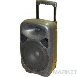 Колонки ПАСАТ BOOM BOX +MP3+AMPL+KAREOKE S8